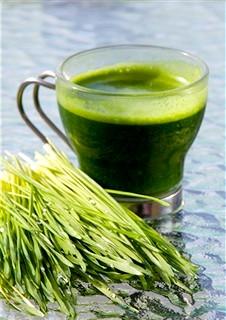 Трав'яні напої: види, властивості, призначення. користь і шкода трав'яних напоїв