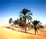 Фото - відпочинок в Тунісі